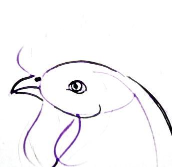 Рисуем голову петуха поэтапно