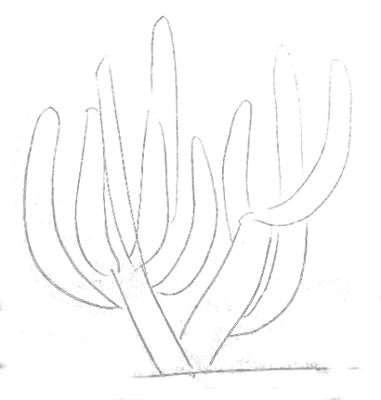 Как рисовать кактусы