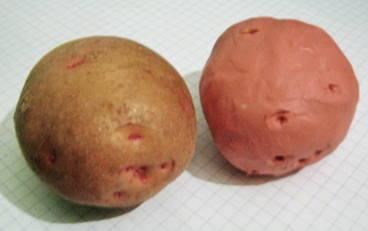 Лепка — картошка из пластилина