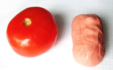Слепим помидор
