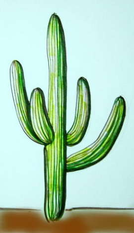 Рисунок кактус цереус