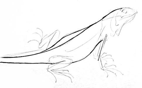 Рисуем игуану -17