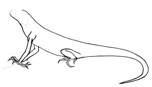 Нарисуем игуану поэтапно