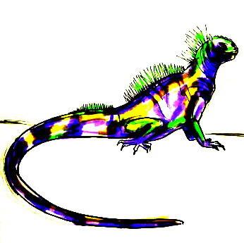 Рисунок Игуана -13