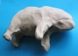 Лепка носорог.