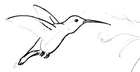 Урок рисования колибри