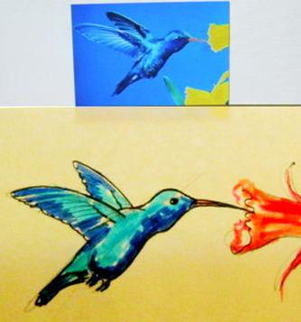 Как нарисовать колибри -2