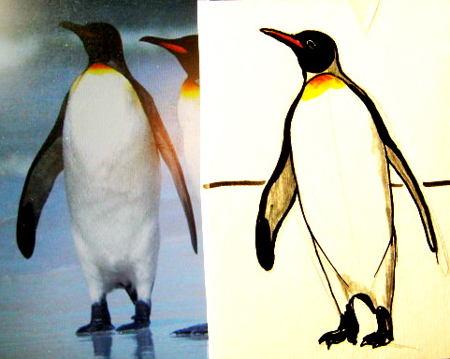 Цветной рисунок Пингвин