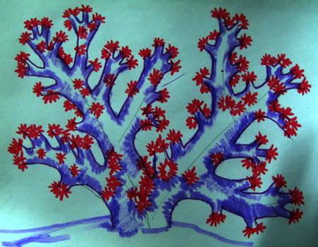 Рисунок Кораллы