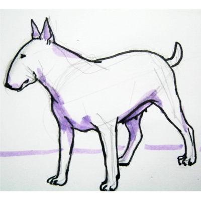 Как нарисовать бультерьера поэтапно