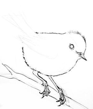 Урок рисования королька