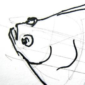 Голова камбалы рисунок.