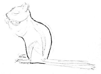 Рисуем бурундука