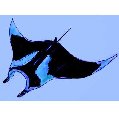 Как нарисовать ската Манту
