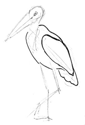 Рисуем туловище марабу