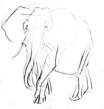 Рисуем африканского слона