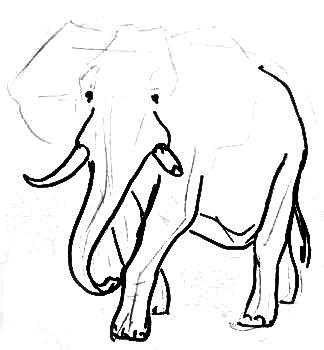 Нарисуем африканского слона