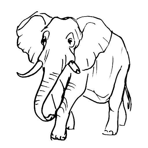 Рисунок -африканский слон