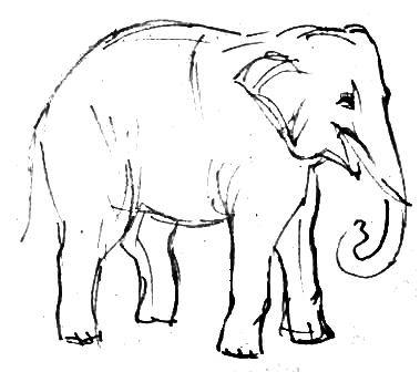 Рисунок слон