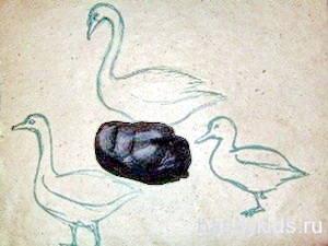 Выбираем пластилин для лепки утки