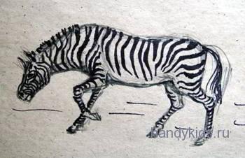 handykidslessons zebra 006