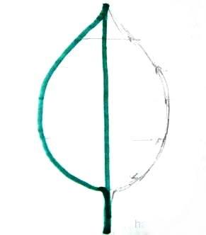 Нарисованный симметричный лист