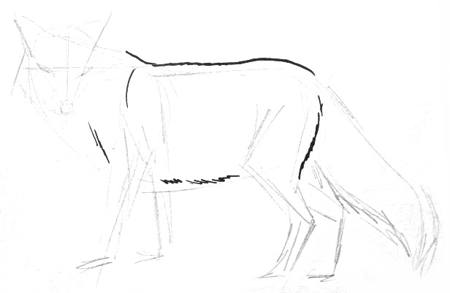 Рисуем лису поэтапно