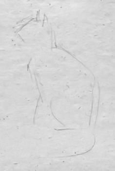 Рисунок котика карандашом