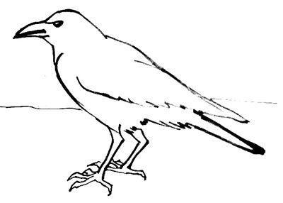 Урок рисования вороны