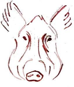Нарисуем голову кабана