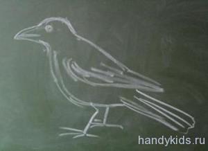 Урок рисования -ворона