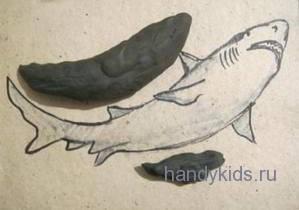 Слепим акулу
