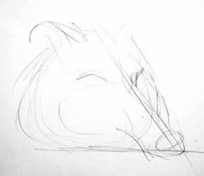 Карандашный набросок головы кабана