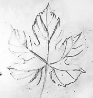 Рисунок -лист