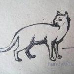 Как из пластилина слепить кошку