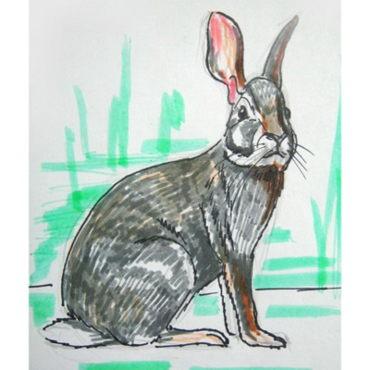 Заяц -рисунок-штриховка