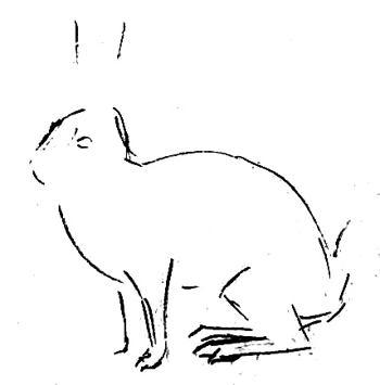 Урок поэтапного рисования зайца.