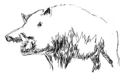 Рисунок кабан(вепрь)