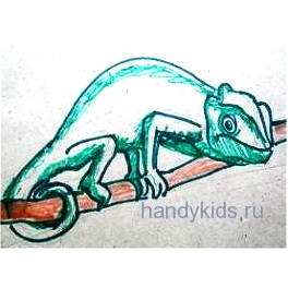 Хамелеон рисунок