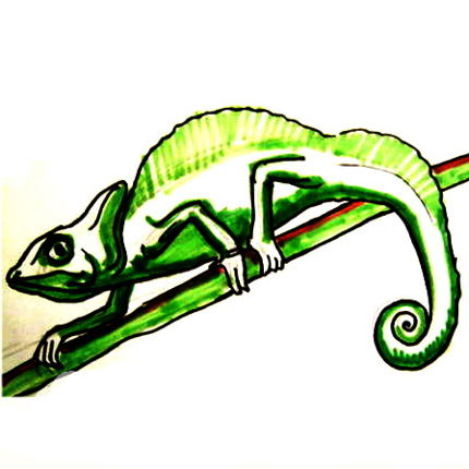 Хамелеон рисунок -7