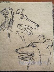 Рисуем голову собаки