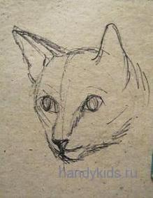 Рисуем голову кошечки