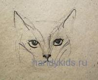 Как нарисовать голову кошки