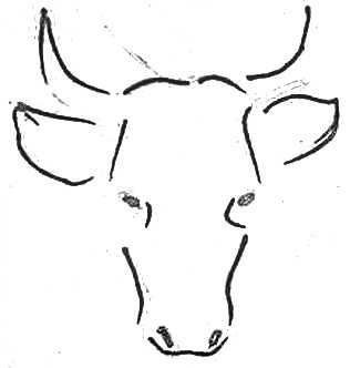 Как нарисовать голову быка