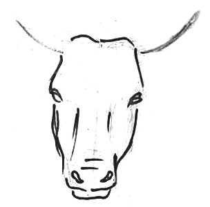Рисуем голову коровы поэтапно