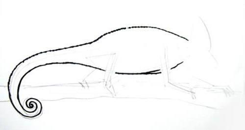 Нарисуем хамелеона поэтапно