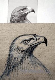 Гордый профиль орла