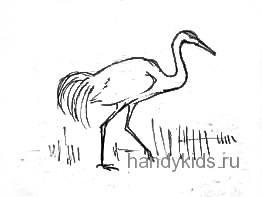 Рисунок Журавль на болоте
