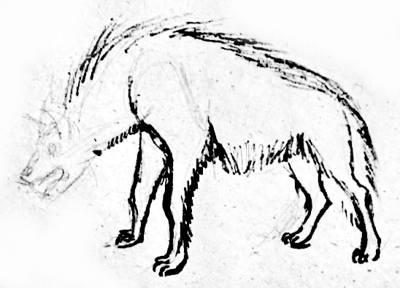 Поэтапный рисунок гиены 2