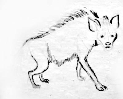 Рисунок Гиена 6